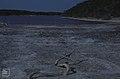 Salt-encrusted shore of Red Pond. Little San Salvador. (38154765354).jpg