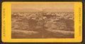 Salt Lake City. (The home of Brigham Young & family.), from Robert N. Dennis collection of stereoscopic views.png