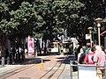San Francisco tramwaje linowe nry 11 i 14.JPG
