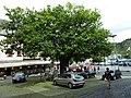 Sankt Goar, Germany - panoramio (4).jpg