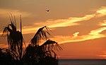 Santa Monica Sunset 2 (15490826880).jpg