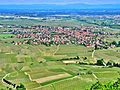 Scherwiller, vu de l'Ortenbourg.jpg