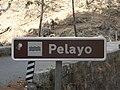 Señal del Río Pelayo.JPG