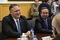 Secretary Pompeo Participates in a Security Shura - 48127730438.jpg