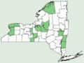 Sedum ternatum NY-dist-map.png