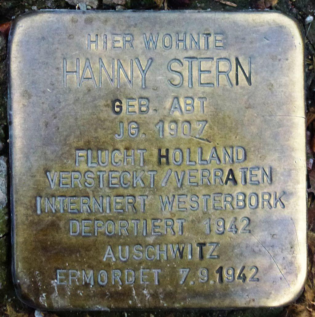 Hanny Stern