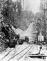 Self Acting Haulage of Mount Lyell 2ft Tramway in Tasmania.jpg
