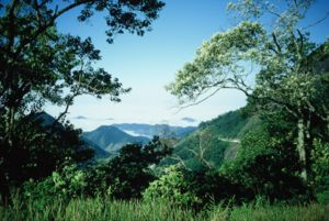 Serra da Bocaina National Park - Image: Serra da Bocaina