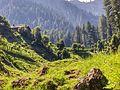 Sharda - hillside view.jpg
