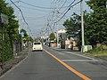 Shizuoka-r163.JPG