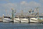 Shrimpboats in Corpus Christi, TX.JPG