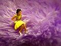 Shrinking Violet (3492598423).jpg