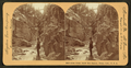 Siren Gorge, below Box Canyon, Ouray, Colo., U.S.A, by Singley, B. L. (Benjamin Lloyd).png