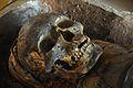 Skull - Egyptian Human Mummy - Egyptian Gallery - Indian Museum - Kolkata 2014-04-04 4355.JPG