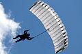 Sky divers (3603686988).jpg