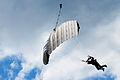 Sky divers (3603688668).jpg