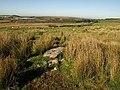 Slab across watercourse, Trowlesworthy Warren - geograph.org.uk - 1529715.jpg