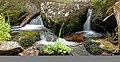 Small Waterfall on Catherine Creek, Wallowa-Whitman National Forest (26776503686).jpg