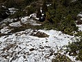 Snow in Kakani 20190228 113333.jpg