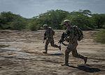 Soldiers train in Djibouti 170110-F-QX786-0257.jpg