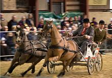 Carriage Driving Wikipedia