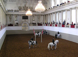 Spanish Riding School - Spanish Riding School Lipizzan stallions in the Winter Riding School arena