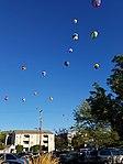 Spirit of Boise Balloon Classic 2018 (8).jpg