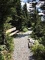 Spruce Knob WV trail 1.jpg