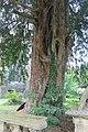 St Briget's Church - Eglwys y Santes Ffraid, Dyserth, Sir Ddinbych, Denbighshire, Wales 31.jpg