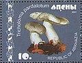 Stamp of Abkhazia - 2007 - Colnect 1008483 - Tricholoma pardalotum.jpeg