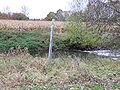 Stangen an rasch strömendem Fließgewässer DSCF6546.jpg