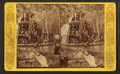 Steamer Osceola, Oklawaha River, Fla, from Robert N. Dennis collection of stereoscopic views.png