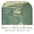 Steckners Weinberg.jpg