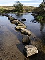 Stepping stones across the West Dart - geograph.org.uk - 593954.jpg