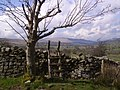 Stile, Dales Way - geograph.org.uk - 758541.jpg