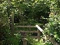Stile into Birches Copse - geograph.org.uk - 490026.jpg