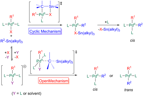 The two mechanisms, cyclic and open, of transmetallation in the Stille reaction.