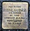 Stolperstein Bölschestr 51 (Frihg) Antonie Hartmann.jpg