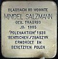 Stumbling block for Mindel Salzmann (Blaubach 80)