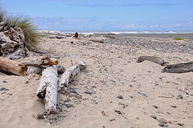Stonefield Beach State Recreation Site.jpg