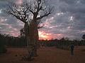 Sunrise at Rena La botanical park. (4352869007).jpg