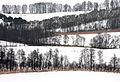 Suwalski Park Krajobrazowy, okolice Szurpił.jpg