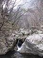 Tai Ping Forest Park 太平森林公园 (5248010279).jpg