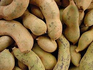 Tamarind - Raw tamarind fruit