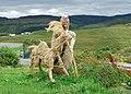 Tattie Bogal Scarecrows - panoramio (3).jpg