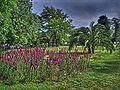Tema Nezahat Gokyigit Park 05342-a.jpg