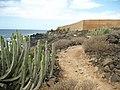 """Teneriffa - Süd - La Galletas - Küstenwanderung nach Westen zum Leuchtturm von Punta Rasca -""""Promenade an Bananenplantage öffentlich"""" - panoramio (2).jpg"""