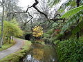 Terra Nostra Gardens (24281411130).jpg