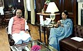 The Chief Minister of Rajasthan, Smt. Vasundhara Raje calls on the Union Minister for Finance, Corporate Affairs and Defence, Shri Arun Jaitley, in New Delhi on July 02, 2014.jpg