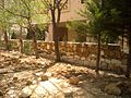 The Fence wall - panoramio.jpg